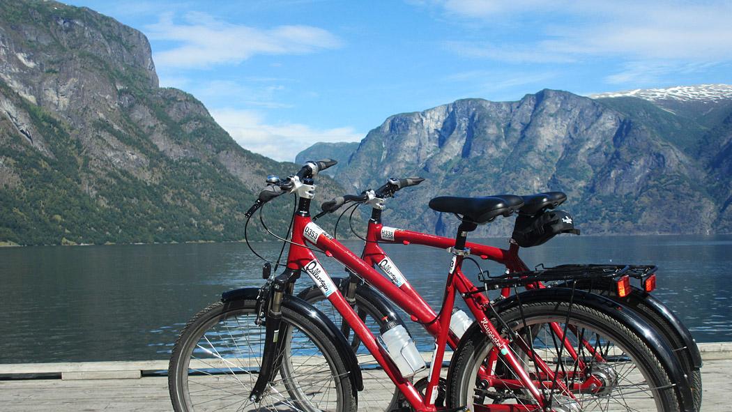 3.--The-bikes