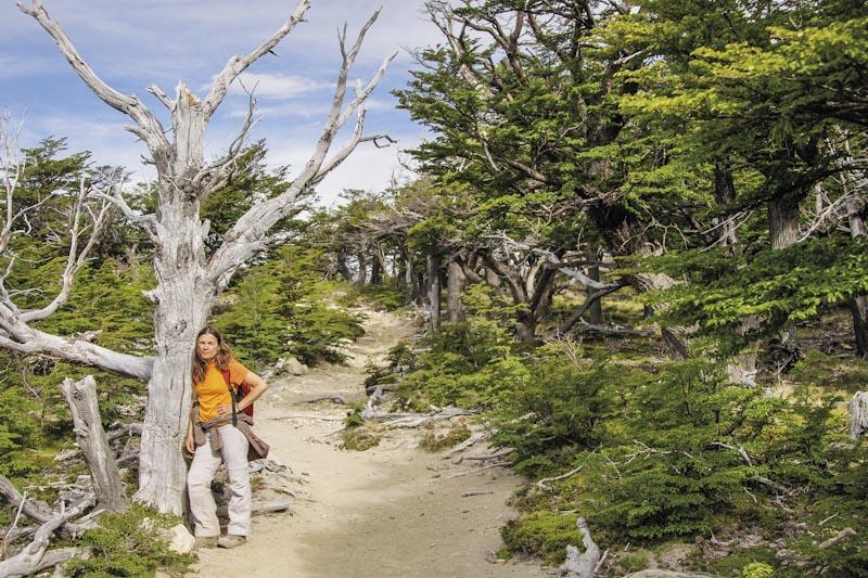 Fitz Roy walk, glacier Argentina