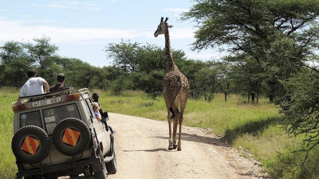 WEB_Tanzania